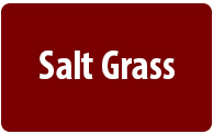 Salt Grass Steakhouse